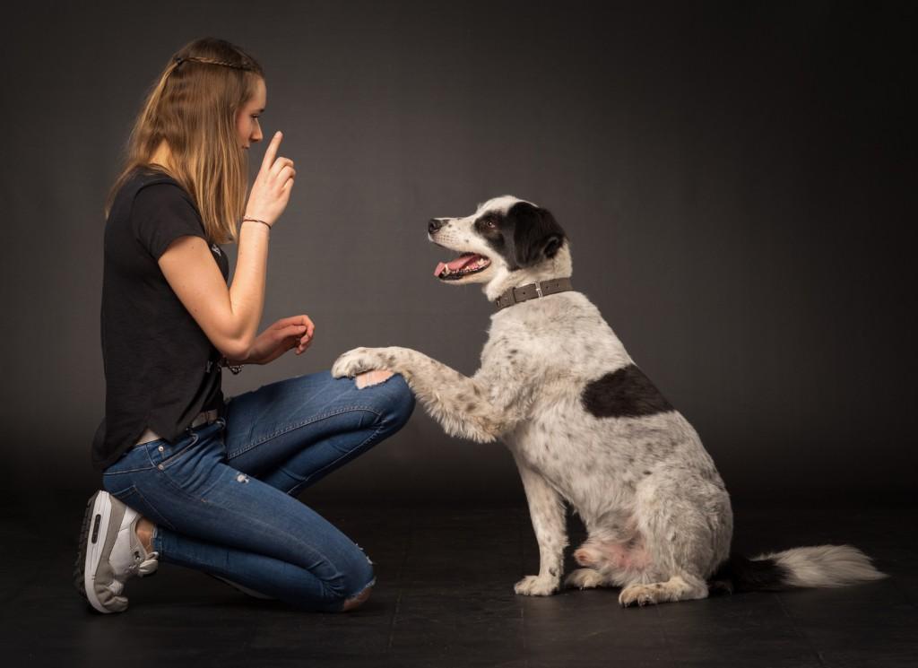 Mädchen mit Hund © [von Lieres] – fotolia.com